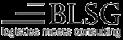 Logo BLSG AG - logistics meets consulting